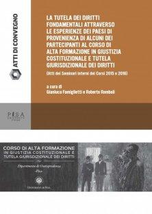La tutela dei diritti fondamentali attraverso le esperienze dei paesi di provenienza di alcuni partecipanti al corso di alta formazione in giustizia costituzionale e tutela giurisdizionale e dei diritti